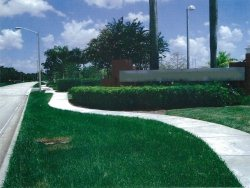 1391 Sawgrass Corporate Parkway available for companies in Sunrise