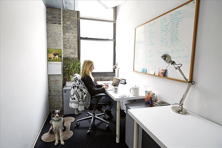 Photo of Office Space on 33 Nassau Ave, Williamsburg, Brooklyn NYC