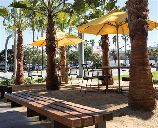 5901 Century, 5901 West Century Blvd, Westchester-Playa Del Rey Office Space - Los Angeles